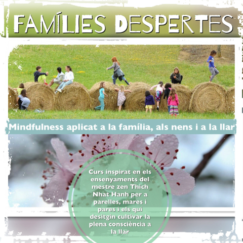 Famílies despertes. Mindfulness aplicat a la família