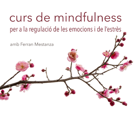 Curso de Mindfulness para la regulación de las emociones