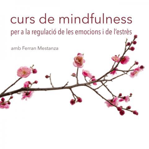Curs de Mindfulness per a la regulació de les emocions i de l'estrès