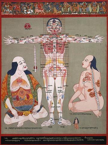 Medicina Tradicional Tibetana i Astrologia
