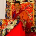 Consultes astrològiques, Taller i Retir amb Chapur Rimpotxé a la Casa del Tibet